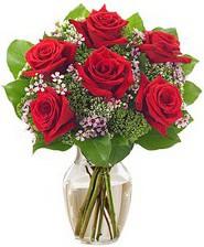 Kız arkadaşıma hediye 6 kırmızı gül  Düzce kaliteli taze ve ucuz çiçekler