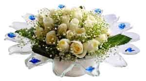 Düzce çiçekçi telefonları  11 adet Beyaz güller özel cam tanzim
