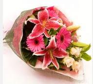 1 dal kazablanka ve mevsim çiçekleri  Düzce kaliteli taze ve ucuz çiçekler