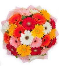 15 adet renkli gerbera buketi  Düzce çiçekçi mağazası