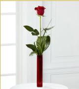 Vazo içerisinde 1 adet kırmızı gül  Düzce kaliteli taze ve ucuz çiçekler