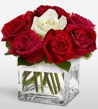 Tek aşkımsın çiçeği 8 kırmızı 1 beyaz gül  Düzce İnternetten çiçek siparişi