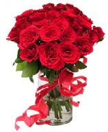 21 adet vazo içerisinde kırmızı gül  Düzce cicekciler , cicek siparisi