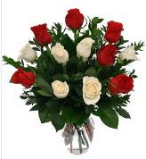 Vazo içerisinde 6 kırmızı 6 beyaz gül  Düzce anneler günü çiçek yolla