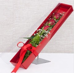 Kutu içerisinde 3 adet kırmızı gül  Düzce yurtiçi ve yurtdışı çiçek siparişi