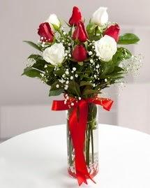 5 kırmızı 4 beyaz gül vazoda  Düzce çiçek yolla , çiçek gönder , çiçekçi