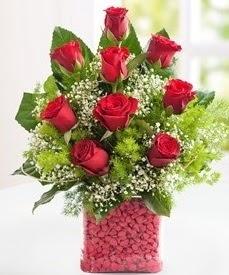 Cam içerisinde 9 adet kırmızı gül  Düzce çiçek servisi , çiçekçi adresleri