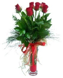 vazo içerisinde 5 kırmızı gül  Düzce hediye çiçek yolla
