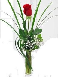 Cam içerisinde 1 kırmızı gül  Düzce internetten çiçek siparişi