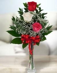 Camda 2 kırmızı 1 beyaz gül  Düzce 14 şubat sevgililer günü çiçek