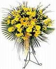 Düzce çiçekçi mağazası  Sari kazablanka Ferforje