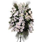 Düzce online çiçekçi , çiçek siparişi  Ferforje beyaz renkli kazablanka