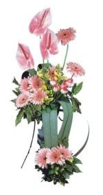 Düzce hediye çiçek yolla  Pembe Antoryum Harikalar Rüyasi