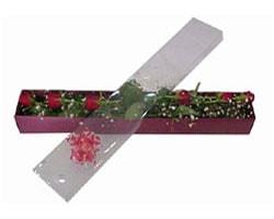 Düzce çiçek yolla   6 adet kirmizi gül kutu içinde