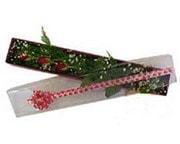 Düzce anneler günü çiçek yolla  3 adet gül.kutu yaldizlidir.