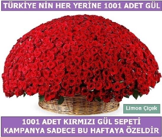 1001 Adet kırmızı gül Bu haftaya özel  Düzce çiçekçiler
