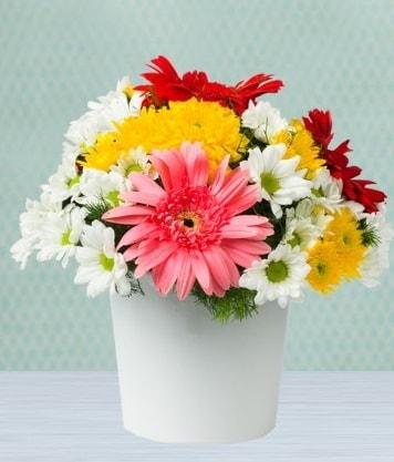 Seramik Vazoda Gelbera ve Papatya  Düzce online çiçek gönderme sipariş
