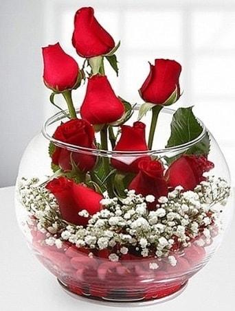 Kırmızı Mutluluk fanusta 9 kırmızı gül  Düzce çiçek online çiçek siparişi