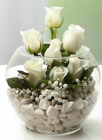 Beyaz Mutluluk 9 beyaz gül fanusta  Düzce çiçek online çiçek siparişi