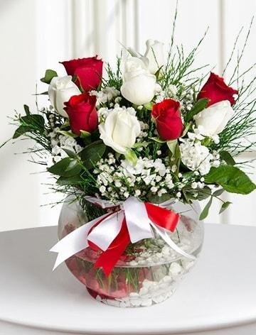 Aşk Küresi  5 beyaz 5 kırmızı gül fanusta  Düzce çiçek servisi , çiçekçi adresleri