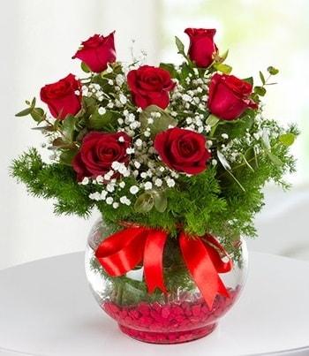 fanus Vazoda 7 Gül  Düzce uluslararası çiçek gönderme