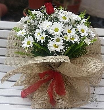 Papatya 1 adet kırmızı gül buketi  Düzce çiçek mağazası , çiçekçi adresleri