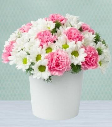 Seramik vazoda papatya ve kır çiçekleri  Düzce çiçek online çiçek siparişi