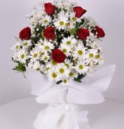 7 adet kırmızı gül ve papatyalar krizantem  Düzce çiçek servisi , çiçekçi adresleri
