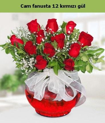 Cam içerisinde 12 adet kırmızı gül  Düzce çiçek servisi , çiçekçi adresleri