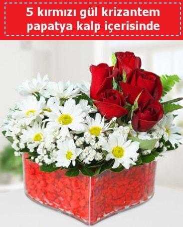 mika kalp içerisinde 5 kırmızı gül papatya  Düzce online çiçek gönderme sipariş