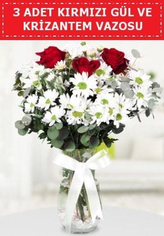 3 kırmızı gül ve camda krizantem çiçekleri  Düzce online çiçek gönderme sipariş