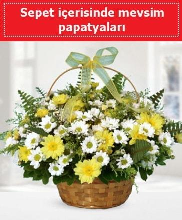 Sepet içerisinde mevsim papatyaları  Düzce 14 şubat sevgililer günü çiçek