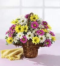 Düzce çiçek mağazası , çiçekçi adresleri  Mevsim çiçekleri sepeti